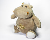 Merry hippo sits on a white background Royalty Free Stock Photos