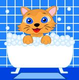 Merry kitten bathes in bath Royalty Free Stock Photos