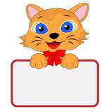 Merry kitten holds a clean banner Royalty Free Stock Photography