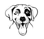 Merry muzzle dogs Royalty Free Stock Images