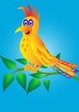 Merry parrot Stock Photo