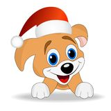 Merry puppy in a christmas cap Stock Photography