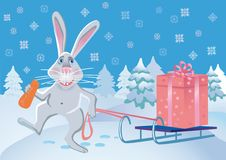 Merry rabbit with a gift. Stock Photography