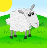 Merry sheep on a green lawn Royalty Free Stock Photos