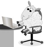 Merry sheep works after a notebook Royalty Free Stock Images