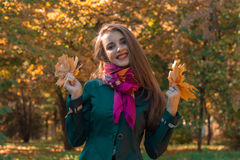 Merry sweet girl in autumn Park keeps the leaves in their hands and smiles Royalty Free Stock Photography
