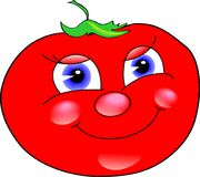 Merry tomato. Tomato-vector,daring tomato,for illustration Stock Photography