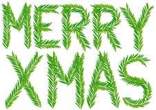 Merry xmas fir branch, vector Royalty Free Stock Photo