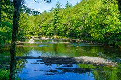Mersey-Fluss, in Nationalpark Kejimkujik lizenzfreie stockfotografie
