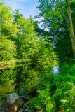 Mersey-Fluss, in Nationalpark Kejimkujik lizenzfreie stockfotos