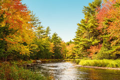 Mersey river in fall Royalty Free Stock Photography