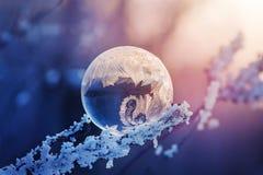 Merveille d'hiver Photos libres de droits