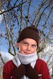 Merveille de l'hiver Photographie stock libre de droits