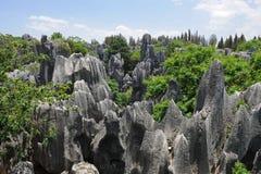 Merveilles normales de la Chine (forêt en pierre) Photo libre de droits