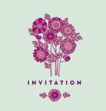Merygold flower card template design. aster floral decorative vector illustration. fall blossom in violet colors motif. Royalty Free Stock Image