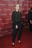 Meryl Streep fotos de archivo libres de regalías