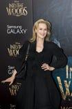 Meryl Streep Fotografering för Bildbyråer