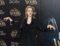 Meryl Streep Στοκ Εικόνες