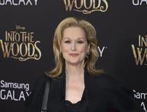 Meryl Streep Royalty Free Stock Images