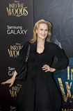 "Meryl Streep. Multiple Oscar-winner Meryl Streep arrives on the red carpet for the world premiere of Disney's ""Into the Woods,"" at The stock image"