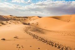Merzouga öken, Marocco royaltyfria bilder