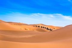 Merzouga в пустыне Сахары в Марокко стоковые изображения