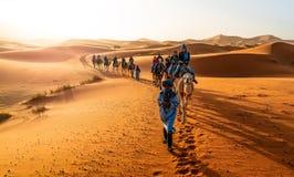 Caravan walking in Merzouga. Merzouga, Morocco - May 02, 2019: Caravan walking in Merzouga, Sahara desert on Morocco stock photos