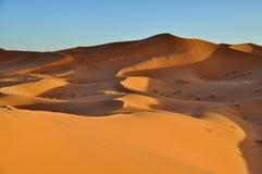 Merzouga pustynia w Maroko Obrazy Stock