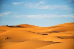 Merzouga sahara, öken med aftonljus Guld- ljus i dyerna scenisk liggande Royaltyfria Foton