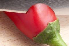 Mes dat rode Spaanse peperspeper snijdt Stock Fotografie