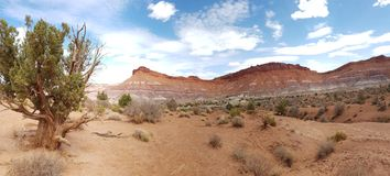 Mesa和沙漠风景,犹他 库存照片
