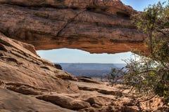 Mesa Arch Fotografia de Stock Royalty Free
