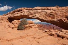 Mesa Arch bij het Nationale Park van Canyonlands Royalty-vrije Stock Afbeelding