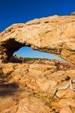 Mesa Arch del parco nazionale del Canyonlands dell'Utah Immagine Stock