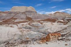 MESA blu, sosta nazionale della foresta Petrified, Arizona Fotografia Stock Libera da Diritti