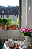 Mesa de desayuno con los beignets y la ventana abierta Imagenes de archivo