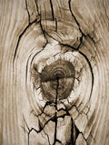 Mesa de madeira do celeiro do assoalho da prancha do vintage de Knothole do close up Foto de Stock Royalty Free