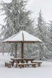 Mesa de picnic de madera con el paraguas de madera en el invierno 3 Foto de archivo