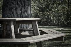 Mesa de picnic del octágono Imagen de archivo libre de regalías