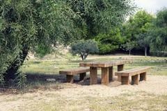 Mesa de picnic de madera en parque Imágenes de archivo libres de regalías