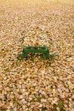 Mesa de picnic ocultada debajo de las hojas de otoño de oro Fotografía de archivo libre de regalías