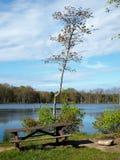 Mesa de picnic rústica al lado del lago de la montaña Imágenes de archivo libres de regalías