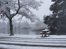 Mesa de picnic vacía cubierta en nieve Fotografía de archivo