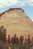 Mesa del tablero de damas, Zion Canyon National Park, Utah Foto de archivo libre de regalías
