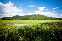 Mesa en paisaje del verano Fotos de archivo libres de regalías