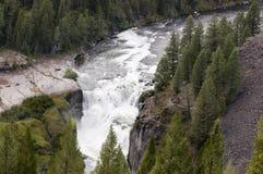 Mesa Falls royalty free stock photos