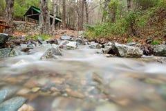 Mesa Potamos Creek nella foresta del Cipro Fotografia Stock Libera da Diritti