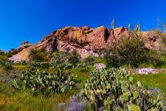 Mesa Trail Superstition Mountain Wilderness noir Arizona Photographie stock libre de droits