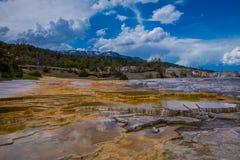 Mesa vaggar modeller på mamoth Hot Springs i den Yellowstone nationalparken, i härlig solig dag och blå himmel fotografering för bildbyråer