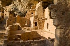 Mesa Verde National Park - casa na árvore Spruce fotos de stock royalty free